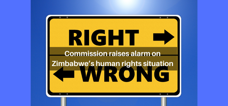Commission raises alarm on Zimbabwe's human rights situation