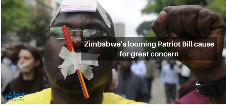 Zimbabwe's looming Patriot Bill cause for great concern