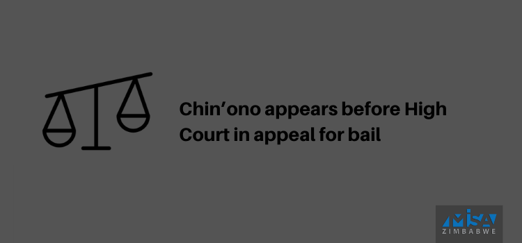 Chin'ono appears before High Court in appeal for bail