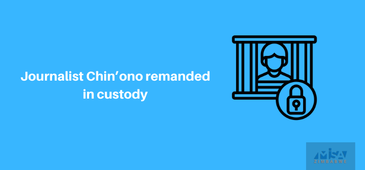 Journalist Chin'ono remanded in custody